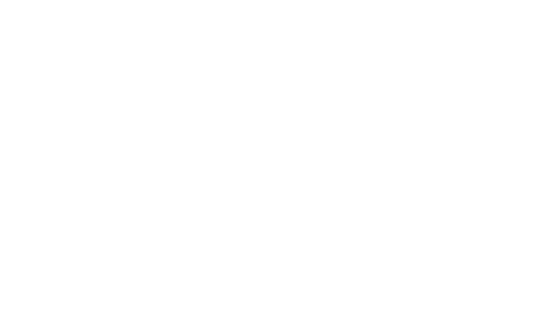 Pierce Insurance Logo